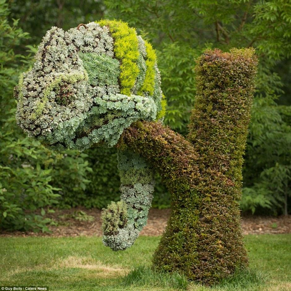 الحديقة المنزلية الصغيرة صور: تنسيق الحدائق